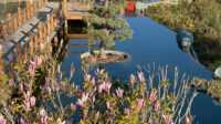 Экскурсия: Японский сад «Шесть чувств» Отеля «Mriya Resort & SPA»