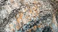 Экскурсия: Жемчужины Севастополя